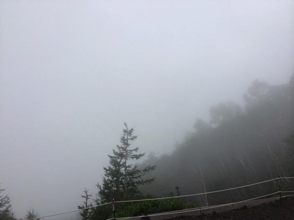 山頂が見えない