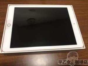 第6世代iPad Wi-Fi+Cellularモデル 128GBを実質7920円で購入しました