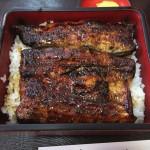 浜松に行くなら、うなぎとハンバーグは食べとけ!後悔するぞ!